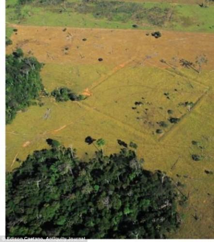 une-autre-formation-decouverte-apres-deforestation_10318_w460.jpg