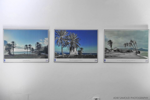 Houaria, photo, expo,adib samoud, récits de la mer, vernissage, art