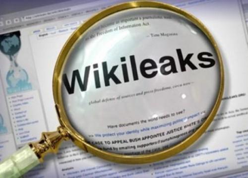 wikileaks ovni